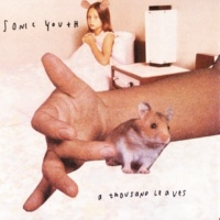 Sonic Youth Heather Angel [Album Version]