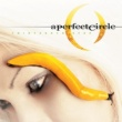 A Perfect Circle Thirteenth Step