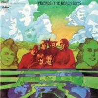 The Beach Boys Transcendental Meditation