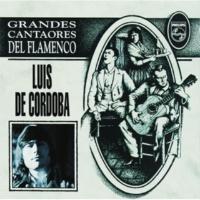 Luis De Córdoba Y Se Llama Curro Vega [Album Version]