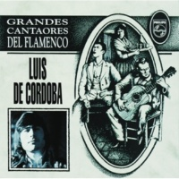 Luis De Córdoba Cantando Paso La Vida