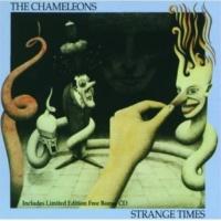 The Chameleons UK Childhood