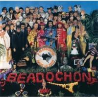 Beadochons Look Anorak(Album Version)