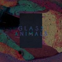 Glass Animals Black Mambo