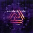 A Perfect Circle 3 Libras PT 1