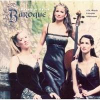 Eroica Trio Sonata in D, Op. 2: I. Adagio-Allegro