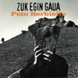 Peio Serbielle Zuk Egin Gaua