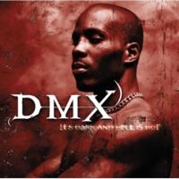 DMX/L.O.X./メイス ニガズ・ダン・スターテッド・サムシングFEAT.ザ・ロックス・アンド・メイス