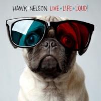 Hawk Nelson Long Ago