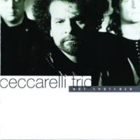 Ceccarelli Trio Dreaming [Instrumental]