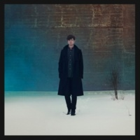 James Blake Digital Lion