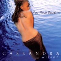 Cassandra Wilson Find Him