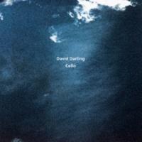 デヴィッド・ダーリング Cello