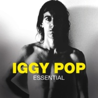 Iggy Pop Louie Louie