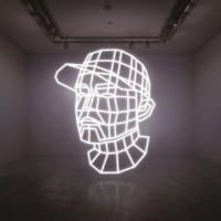 DJ Shadow Reconstructed : The Best Of DJ Shadow [Deluxe Edition]