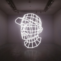 DJ Shadow Reconstructed : The Best Of DJ Shadow