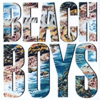 The Beach Boys Maybe I Don't Know