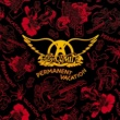 Aerosmith Permanent Vacation [Reissue Remastered]