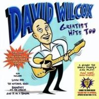 David Wilcox Rainy Night Saloon