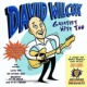 David Wilcox Greatest Hits Too