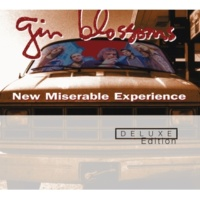 GIN BLOSSOMS Mrs. Rita [1993/Live At Belly Up Tavern]