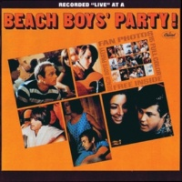 The Beach Boys I Should Have Known Better
