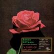 Erkki Ertama A Taste of Organ