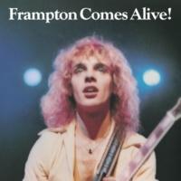 ピーター・フランプトン Do You Feel Like We Do [Live/Single Edit]