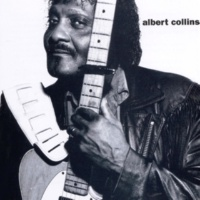 Albert Collins Put The Shoe On The Other Foot