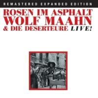 Wolf Maahn Ich Will Dir Meine Liebe Geben