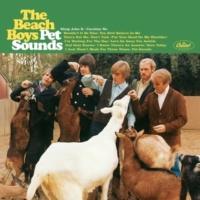 The Beach Boys Let's Go Away For Awhile (Digitally Remastered 96)