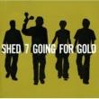 シェッド・セヴン SHED SEVEN
