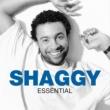 Shaggy Essential