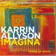 Karrin Allyson イマージナ~ソングス・オブ・ブラジル [Japan]