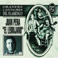 La Perrata/Juan Pena El Tio De La Alhucema [Album Version]