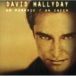David Hallyday Un Paradis Un Enfer