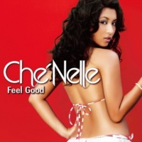 Che'Nelle featuring Cham I Fell In Love With The DJ (Ruff Diamond Remix)