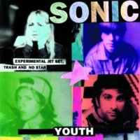 Sonic Youth In The Mind Of The Bourgeois Reader [Album Version]