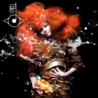 Björk Sacrifice