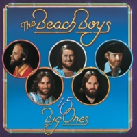 The Beach Boys In the Still of the Night