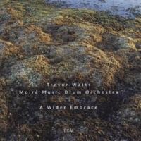 Trevor Watts/Moiré Music Drum Orchestra Hunters' Song: Ibrumankuman