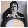 John Cale The Island Years