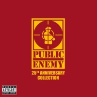 Public Enemy House Of The Rising Son