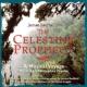 クリストファー・フランケ The Celestine Prophecy-A Musical Voyage