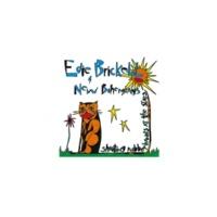 Edie Brickell & New Bohemians The Wheel [Album Version]