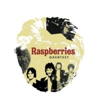 The Raspberries Drivin' Around (24-Bit Remastered 99)