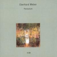 Eberhard Weber Notes After An Evening