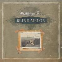 Blind Melon 2 X 4 (2002 Digital Remaster)