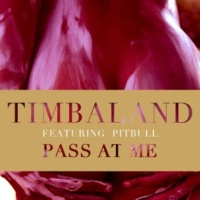 Timbaland/Pitbull Pass At Me (feat.Pitbull)