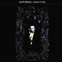 Gavin Friday King Of Trash